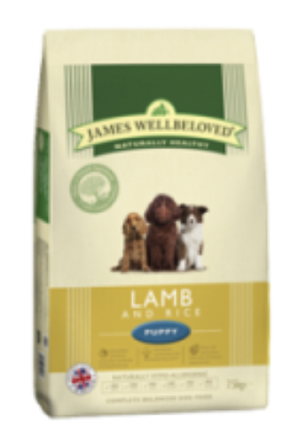 lamb-rice-puppy_large