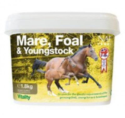 mare-foal-&-youngstock